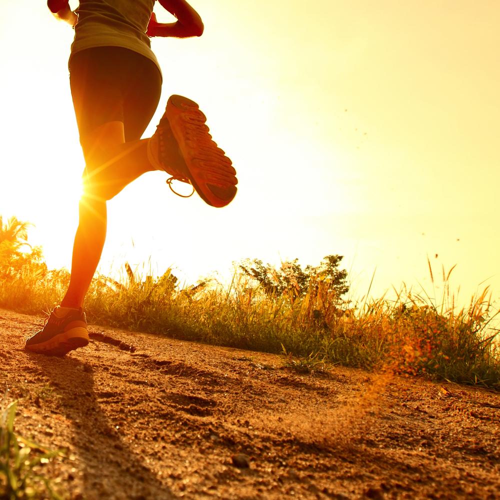 Votre plan d'entraînement trail sur mesure!