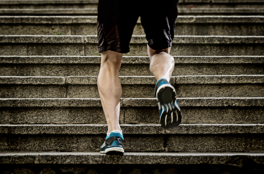 Renforcement musculaire trail